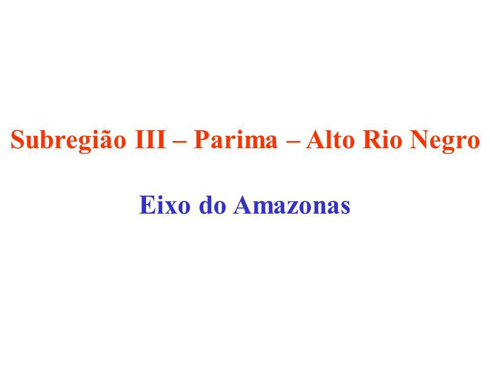 Subregião III – Parima – Alto Rio Negro Eixo do Amazonas