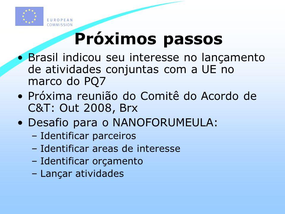 Próximos passos Brasil indicou seu interesse no lançamento de atividades conjuntas com a UE no marco do PQ7 Próxima reunião do Comitê do Acordo de C&T: Out 2008, Brx Desafio para o NANOFORUMEULA: –Identificar parceiros –Identificar areas de interesse –Identificar orçamento –Lançar atividades