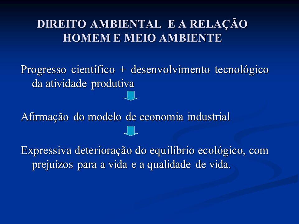 DUARTE, Marise Costa de Souza.Meio Ambiente Sadio – Direito Fundamental.