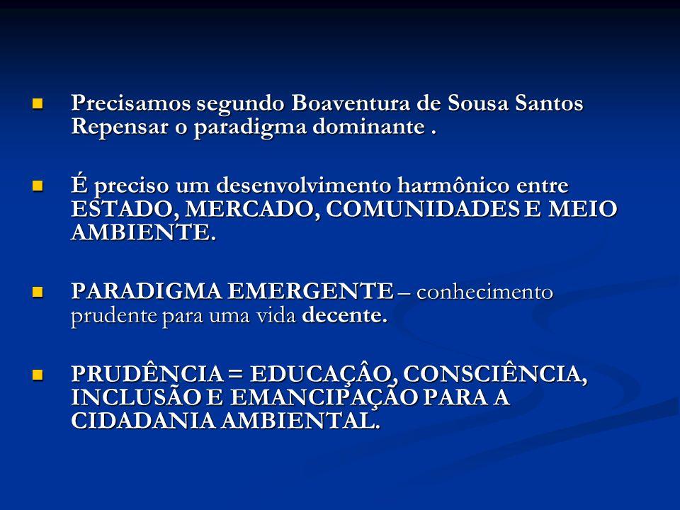 Precisamos segundo Boaventura de Sousa Santos Repensar o paradigma dominante. Precisamos segundo Boaventura de Sousa Santos Repensar o paradigma domin