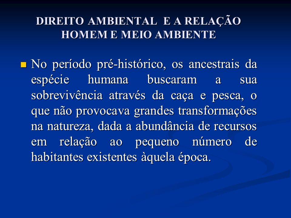 ESTOCOLMO 1972 / RIO 1992 c) o espraiamento da temática do meio ambiente em todos os campos do Direito Internacional, selando a característica de o Direito Internacional do Meio Ambiente se constituir em uma verdadeira manifestação da globalidade dos dias atuais.