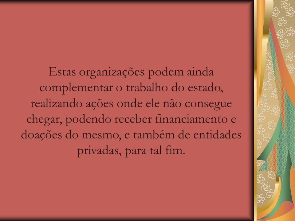 A ONG não tem valor jurídico, sendo que no Brasil existem três figuras jurídicas correspondentes no novo código civil compõem o terceiro setor: fundações e organizações religiosas (que foram recentemente consideradas como uma terceira categoria).