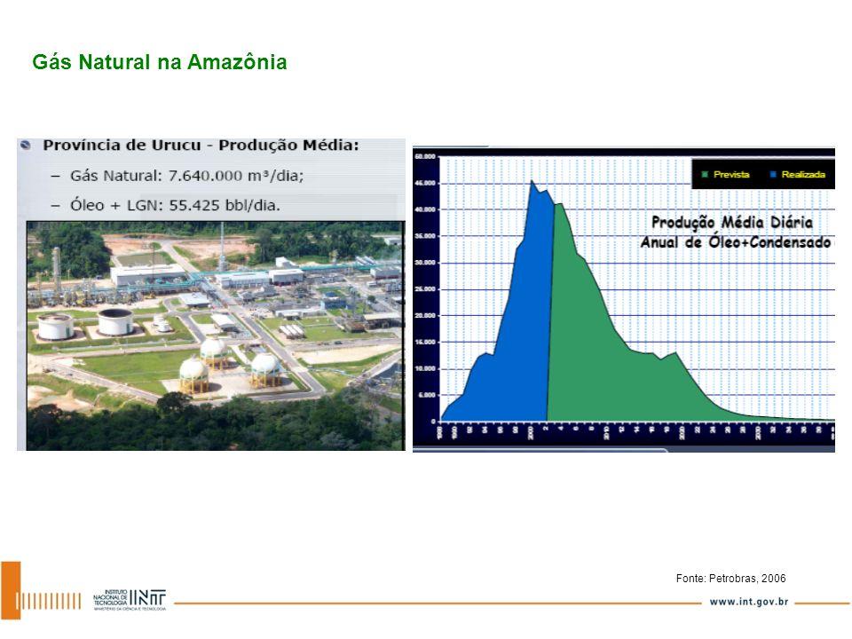 Gasoduto COARI – MANAUS Investimento Total: US$ 393 MM Capacidade: 10,5 MM m 3 /dia Volume considerado: 5,5 MM m 3 /dia Extensão: 385 km Panorama do Gás Natural e Oferta Geral de Energia na Região Fonte: Petrobras, 2006 Fonte: CTGás, 2007 l