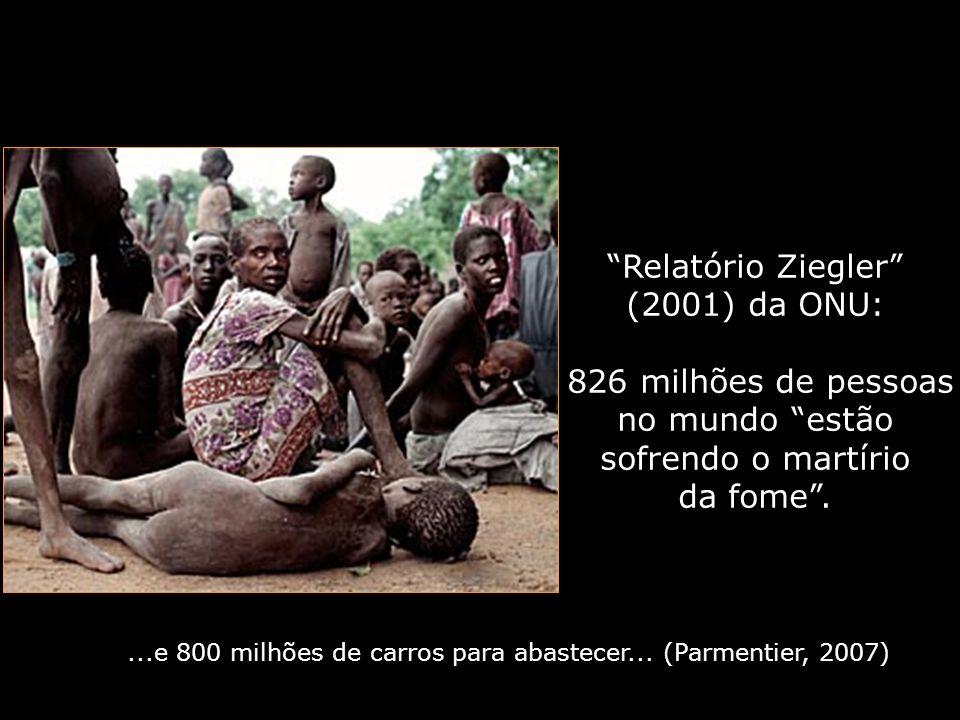 Relatório Ziegler (2001) da ONU: 826 milhões de pessoas no mundo estão sofrendo o martírio da fome....e 800 milhões de carros para abastecer... (Parme
