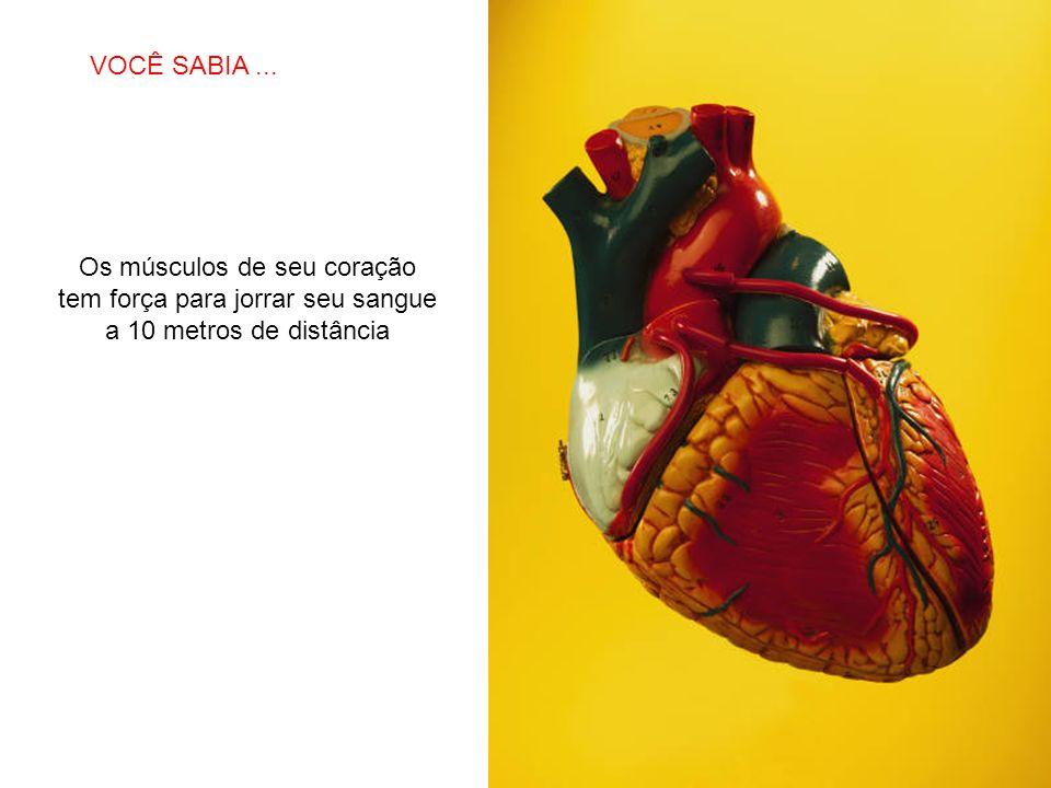 SABIAS QUE… Os músculos de seu coração tem força para jorrar seu sangue a 10 metros de distância VOCÊ SABIA...