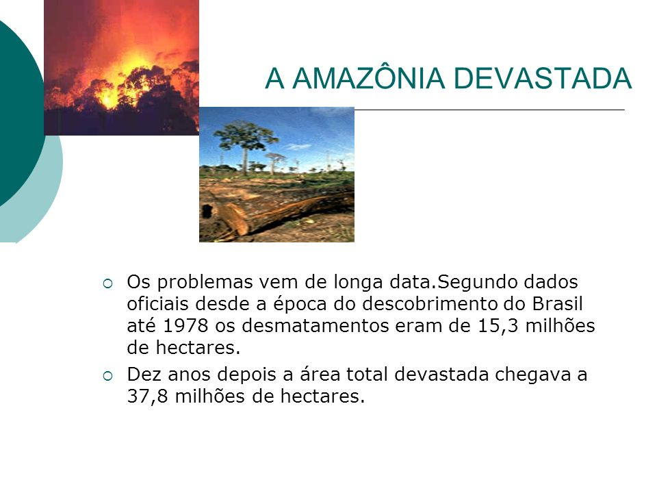 A AMAZÔNIA DEVASTADA Os problemas vem de longa data.Segundo dados oficiais desde a época do descobrimento do Brasil até 1978 os desmatamentos eram de 15,3 milhões de hectares.