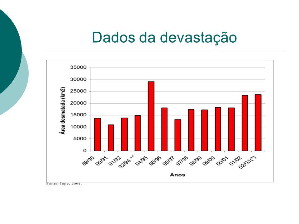 Dados da devastação