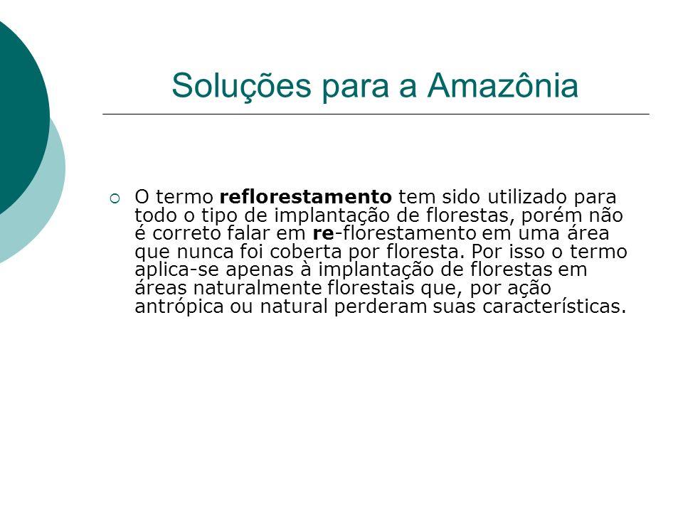 Soluções para a Amazônia O termo reflorestamento tem sido utilizado para todo o tipo de implantação de florestas, porém não é correto falar em re-florestamento em uma área que nunca foi coberta por floresta.