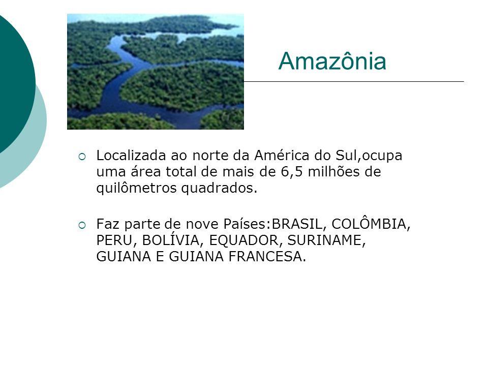 Localizada ao norte da América do Sul,ocupa uma área total de mais de 6,5 milhões de quilômetros quadrados. Faz parte de nove Países:BRASIL, COLÔMBIA,