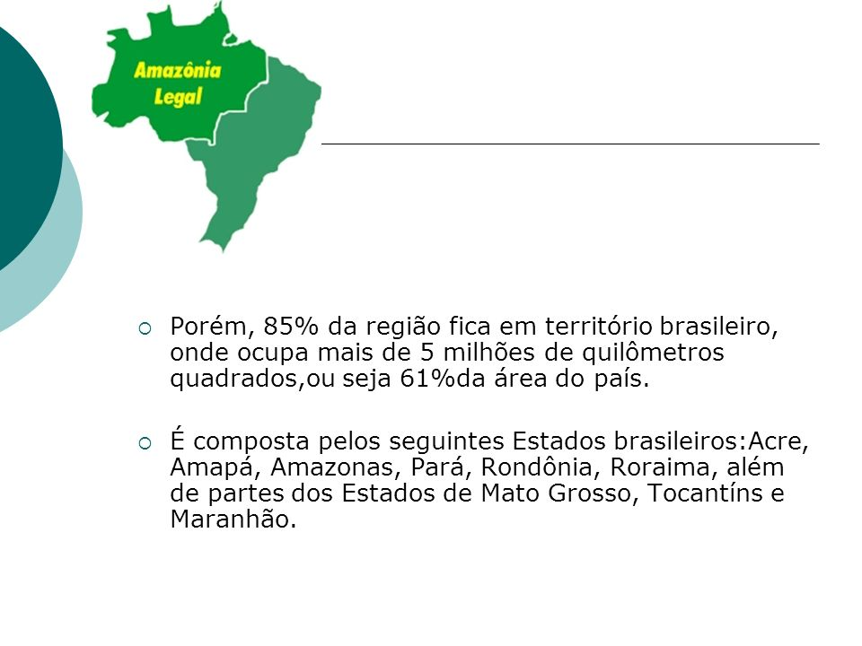 Porém, 85% da região fica em território brasileiro, onde ocupa mais de 5 milhões de quilômetros quadrados,ou seja 61%da área do país. É composta pelos