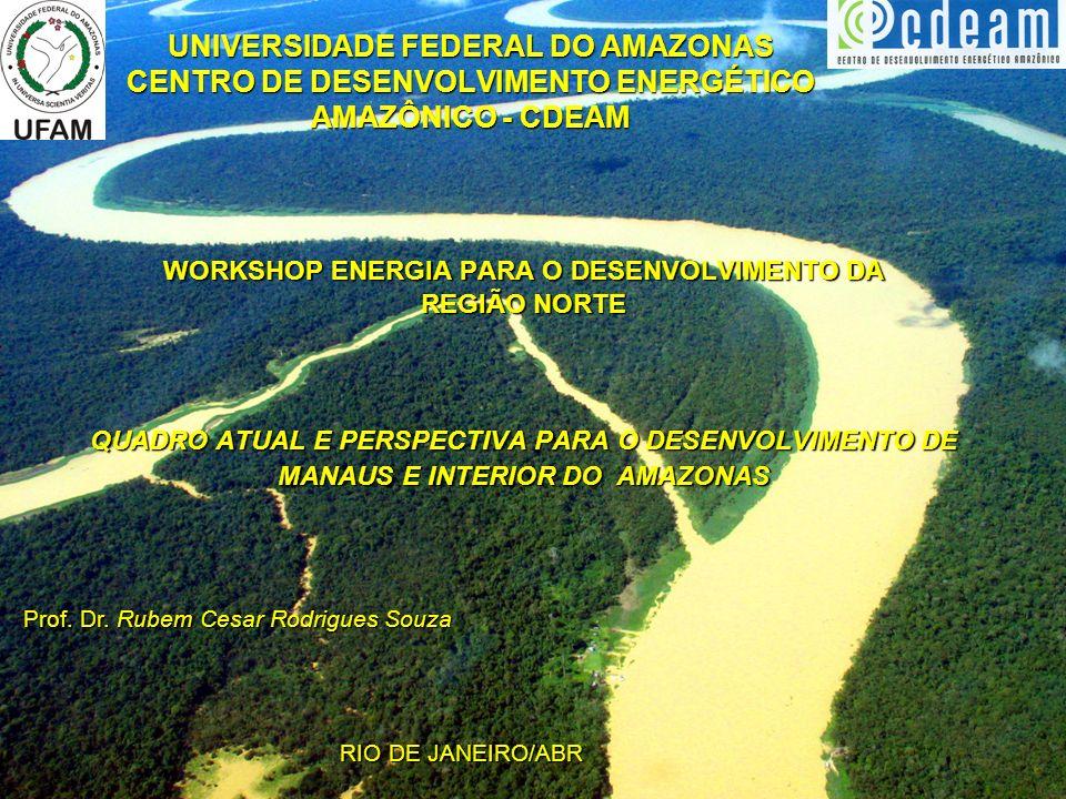 UNIVERSIDADE FEDERAL DO AMAZONAS CENTRO DE DESENVOLVIMENTO ENERGÉTICO AMAZÔNICO - CDEAM WORKSHOP ENERGIA PARA O DESENVOLVIMENTO DA REGIÃO NORTE QUADRO