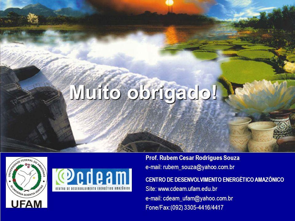 Muito obrigado! Prof. Rubem Cesar Rodrigues Souza e-mail: rubem_souza@yahoo.com.br CENTRO DE DESENVOLVIMENTO ENERGÉTICO AMAZÔNICO Site: www.cdeam.ufam