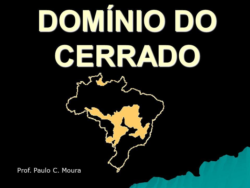 Cerrados O domínio dos cerrados é caracterizado por um tipo de vegetação que abrange em torno de 1/5 do território brasileiro.