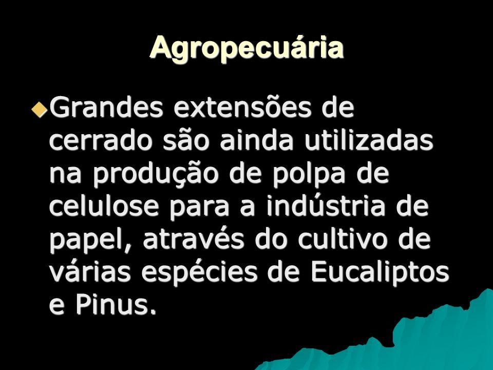 IMPACTOS AMBIENTAIS - GRANDES PROJETOS AGROPECUÁRIOS - EXPANSÃO URBANA DESORDENADA - INVASÃO DE RESERVAS INDÍGENAS - OLARIAS - GARIMPO DE OURO E PEDRAS PRECIOSAS - INDÚSTRIA DE TRANSFORMAÇÃO