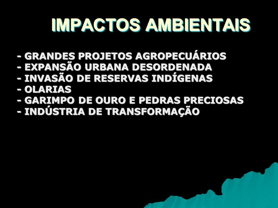 IMPACTOS AMBIENTAIS - GRANDES PROJETOS AGROPECUÁRIOS - EXPANSÃO URBANA DESORDENADA - INVASÃO DE RESERVAS INDÍGENAS - OLARIAS - GARIMPO DE OURO E PEDRA