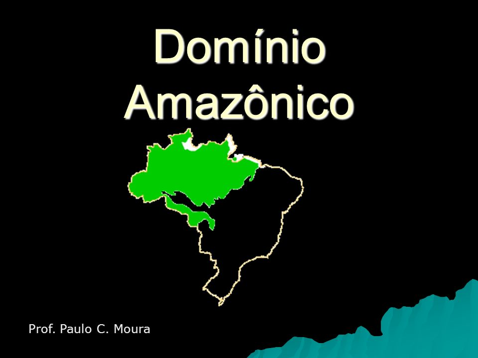 Domínio Amazônico Prof. Paulo C. Moura