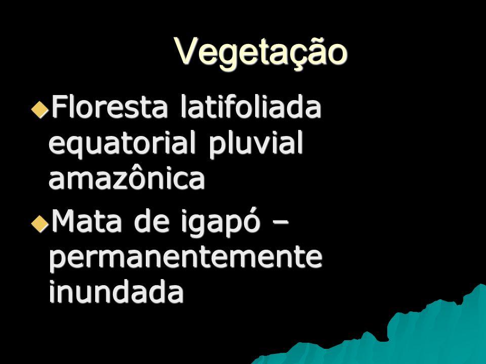 Vegetação Floresta latifoliada equatorial pluvial amazônica Floresta latifoliada equatorial pluvial amazônica Mata de igapó – permanentemente inundada