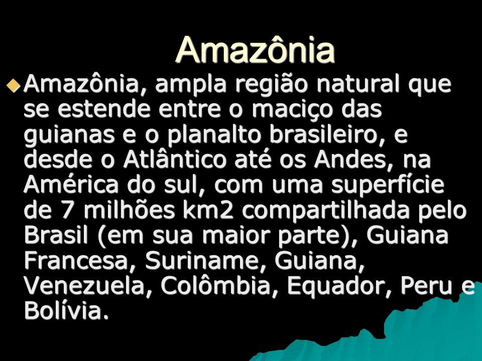 Amazônia Amazônia, ampla região natural que se estende entre o maciço das guianas e o planalto brasileiro, e desde o Atlântico até os Andes, na Améric