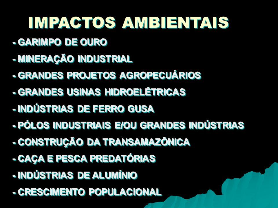 IMPACTOS AMBIENTAIS - GARIMPO DE OURO - MINERAÇÃO INDUSTRIAL - GRANDES PROJETOS AGROPECUÁRIOS - GRANDES USINAS HIDROELÉTRICAS - INDÚSTRIAS DE FERRO GU
