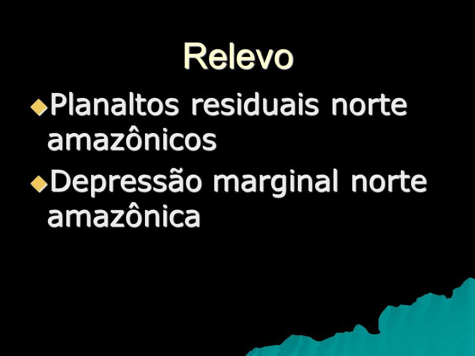 Relevo Planaltos residuais norte amazônicos Planaltos residuais norte amazônicos Depressão marginal norte amazônica Depressão marginal norte amazônica