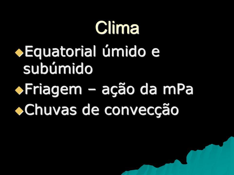 Clima Equatorial úmido e subúmido Equatorial úmido e subúmido Friagem – ação da mPa Friagem – ação da mPa Chuvas de convecção Chuvas de convecção