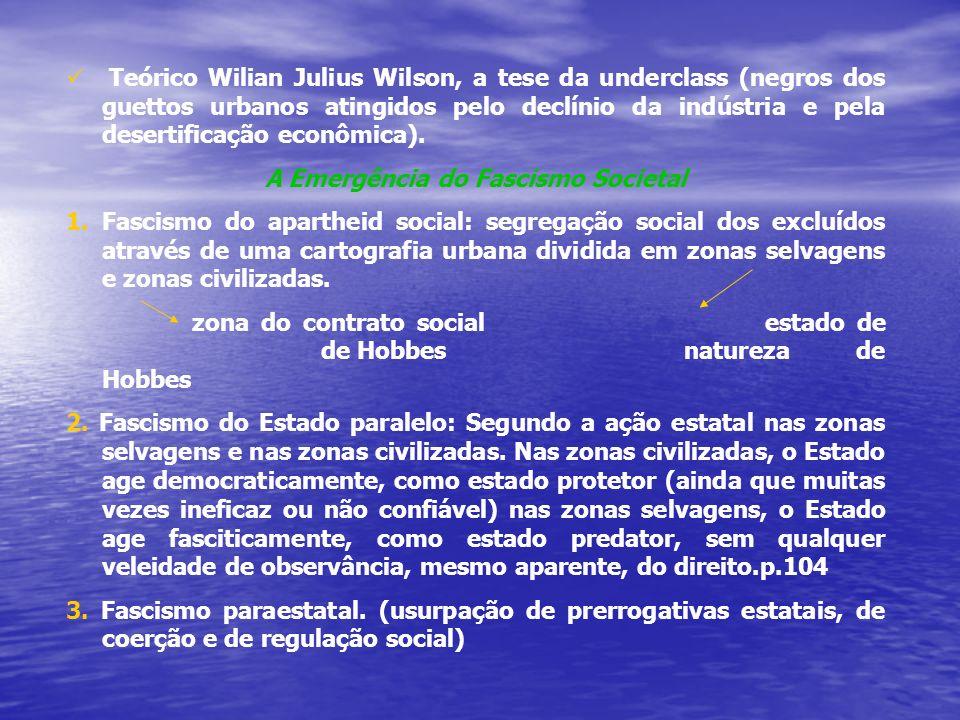 Teórico Wilian Julius Wilson, a tese da underclass (negros dos guettos urbanos atingidos pelo declínio da indústria e pela desertificação econômica).