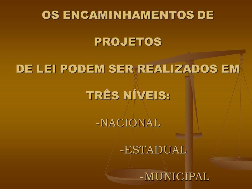 OS ENCAMINHAMENTOS DE PROJETOS DE LEI PODEM SER REALIZADOS EM TRÊS NÍVEIS: -NACIONAL -ESTADUAL -MUNICIPAL