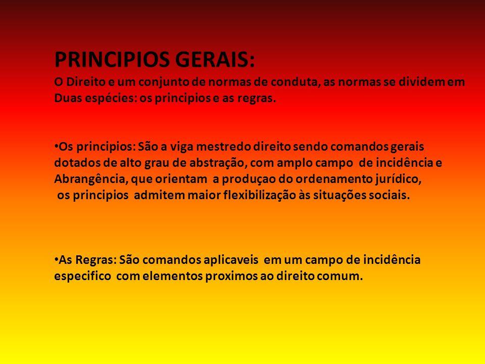 PRINCIPIOS GERAIS: O Direito e um conjunto de normas de conduta, as normas se dividem em Duas espécies: os principios e as regras.