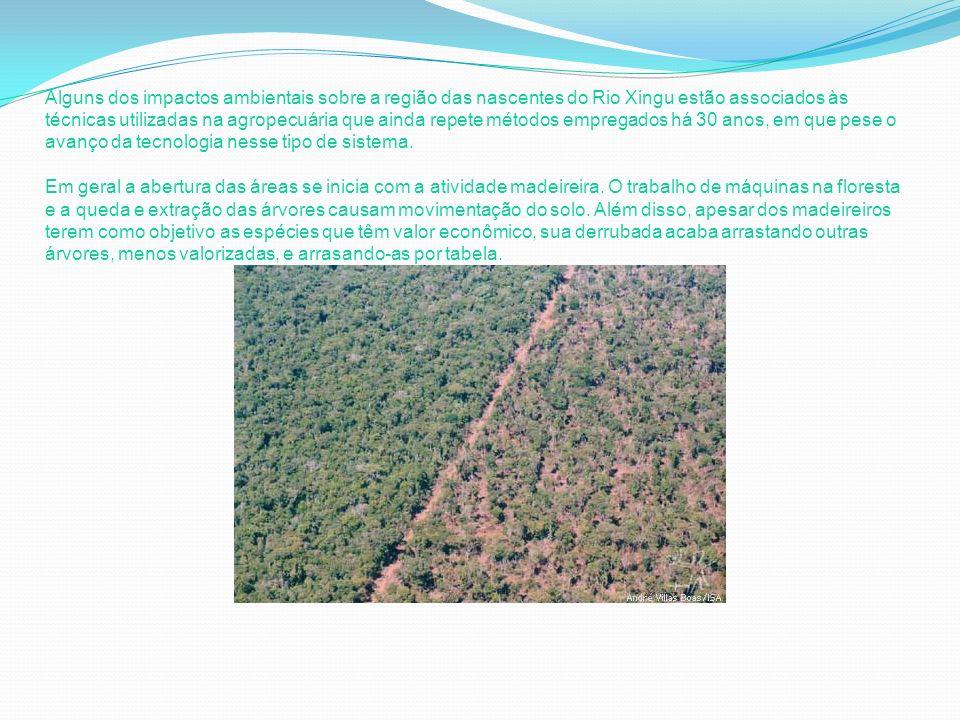 Alguns dos impactos ambientais sobre a região das nascentes do Rio Xingu estão associados às técnicas utilizadas na agropecuária que ainda repete méto