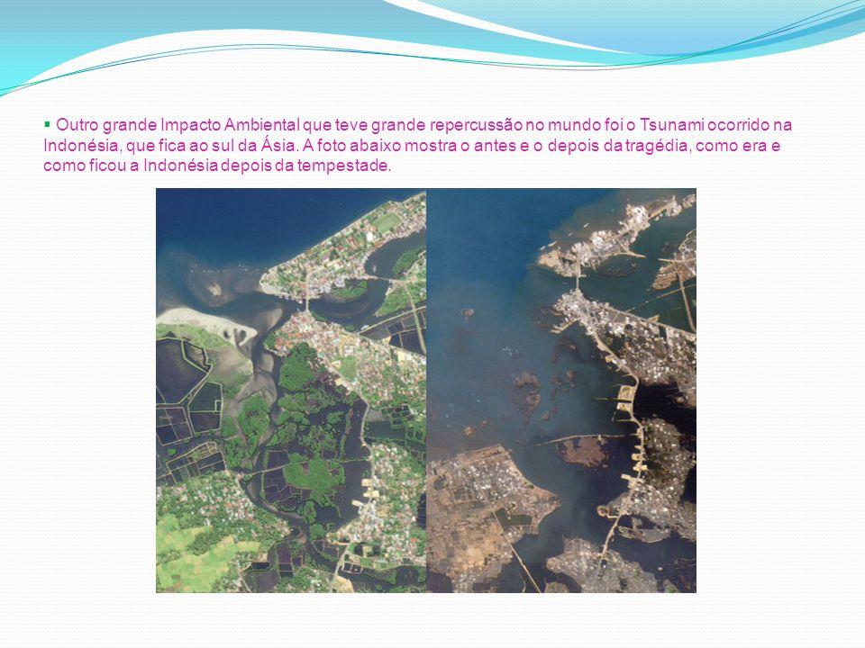 Outro grande Impacto Ambiental que teve grande repercussão no mundo foi o Tsunami ocorrido na Indonésia, que fica ao sul da Ásia. A foto abaixo mostra