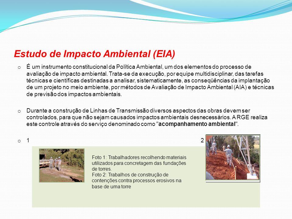 Estudo de Impacto Ambiental (EIA) o É um instrumento constitucional da Política Ambiental, um dos elementos do processo de avaliação de impacto ambien