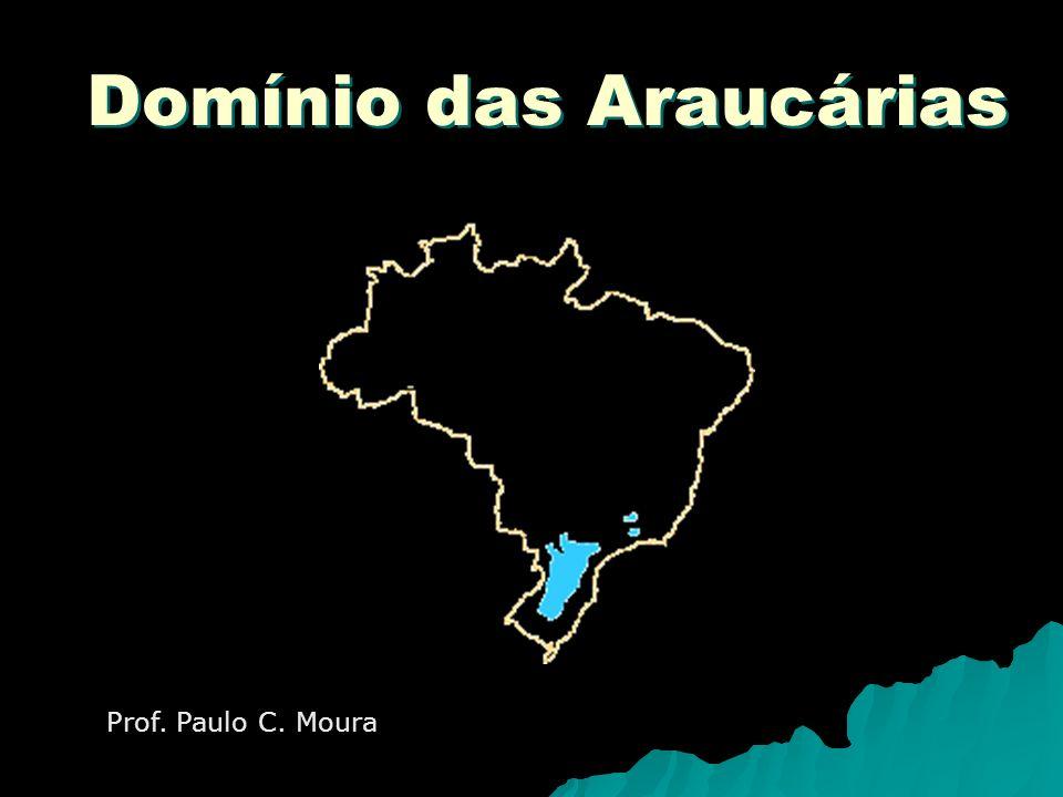 Domínio das Araucárias Prof. Paulo C. Moura