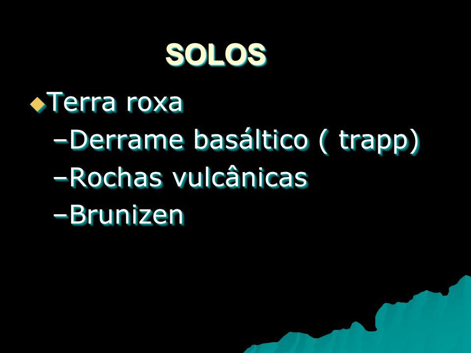 SOLOSSOLOS Terra roxa Terra roxa –Derrame basáltico ( trapp) –Rochas vulcânicas –Brunizen Terra roxa Terra roxa –Derrame basáltico ( trapp) –Rochas vulcânicas –Brunizen