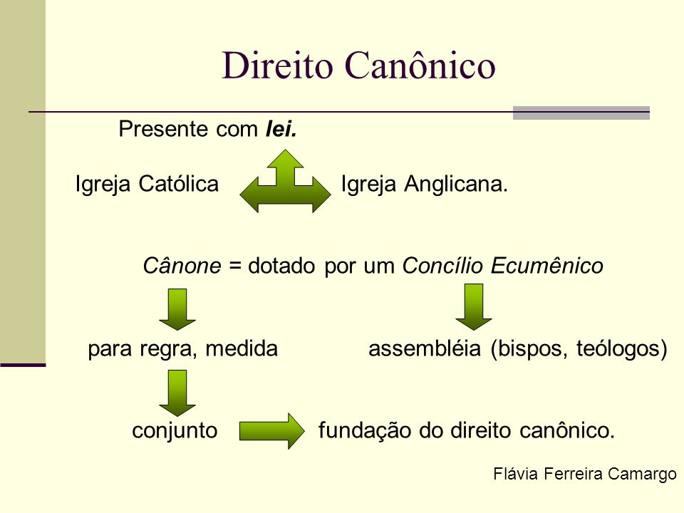 Direito Canônico, importante no processo e no conceito de jurisdição Flávia Ferreira Camargo