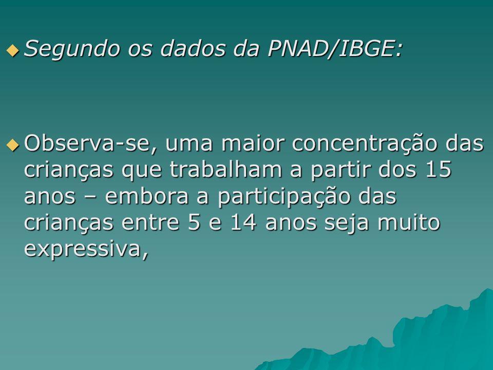 Segundo os dados da PNAD/IBGE: Segundo os dados da PNAD/IBGE: Observa-se, uma maior concentração das crianças que trabalham a partir dos 15 anos – emb