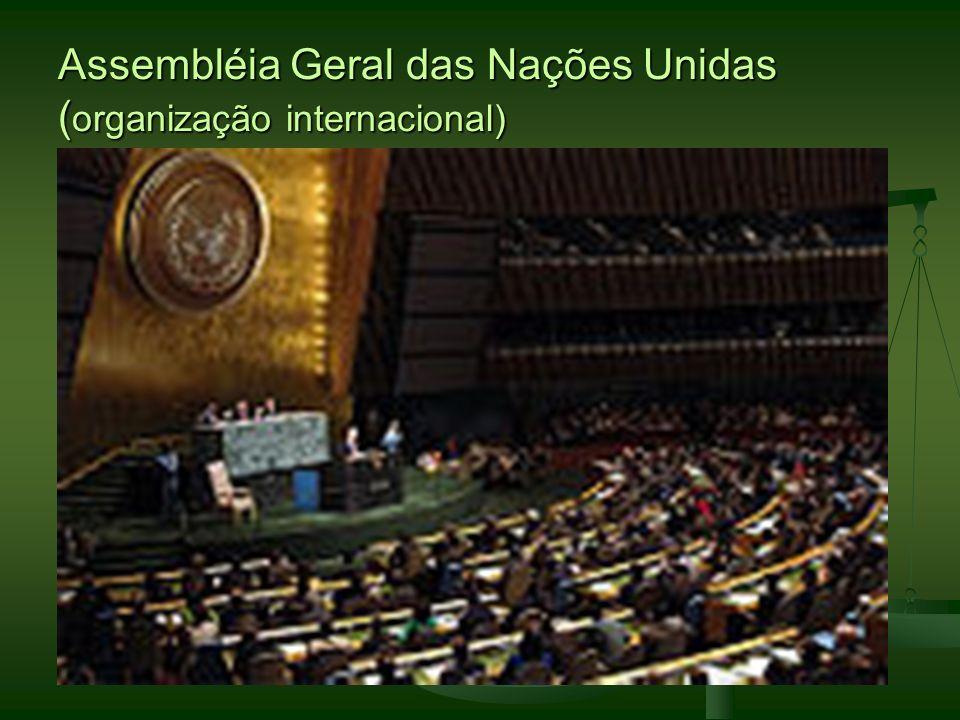Assembléia Geral das Nações Unidas ( organização internacional)