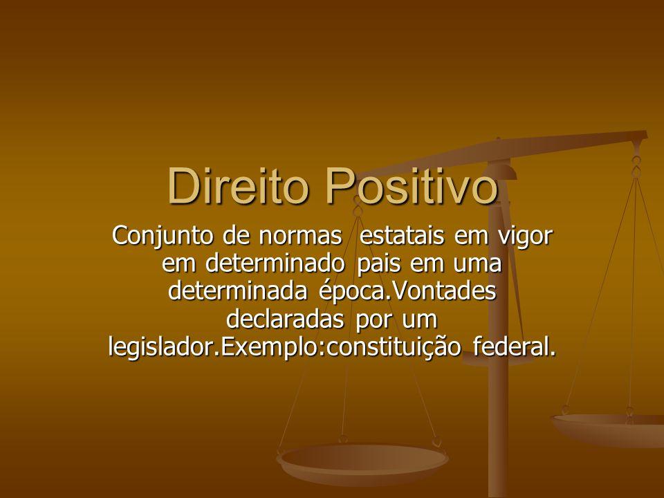 O direito positivo assegura a unidade de todo o sistema juridico.