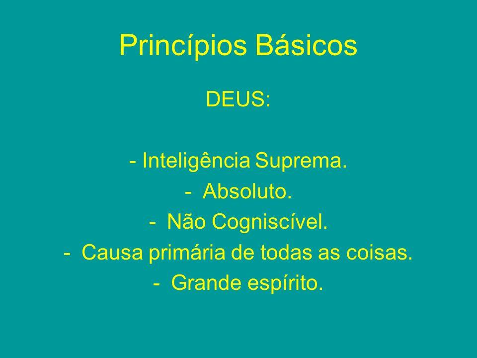 Princípios Básicos DEUS: - Inteligência Suprema. -Absoluto. -Não Cogniscível. -Causa primária de todas as coisas. -Grande espírito.