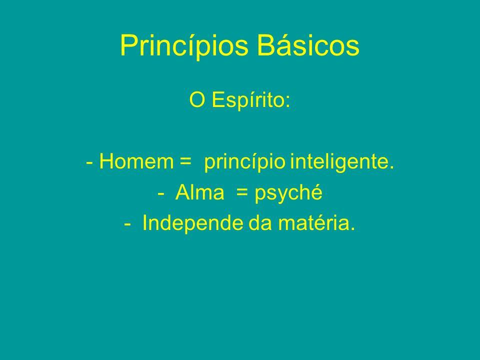 Princípios Básicos O Espírito: - Homem = princípio inteligente. -Alma = psyché -Independe da matéria.