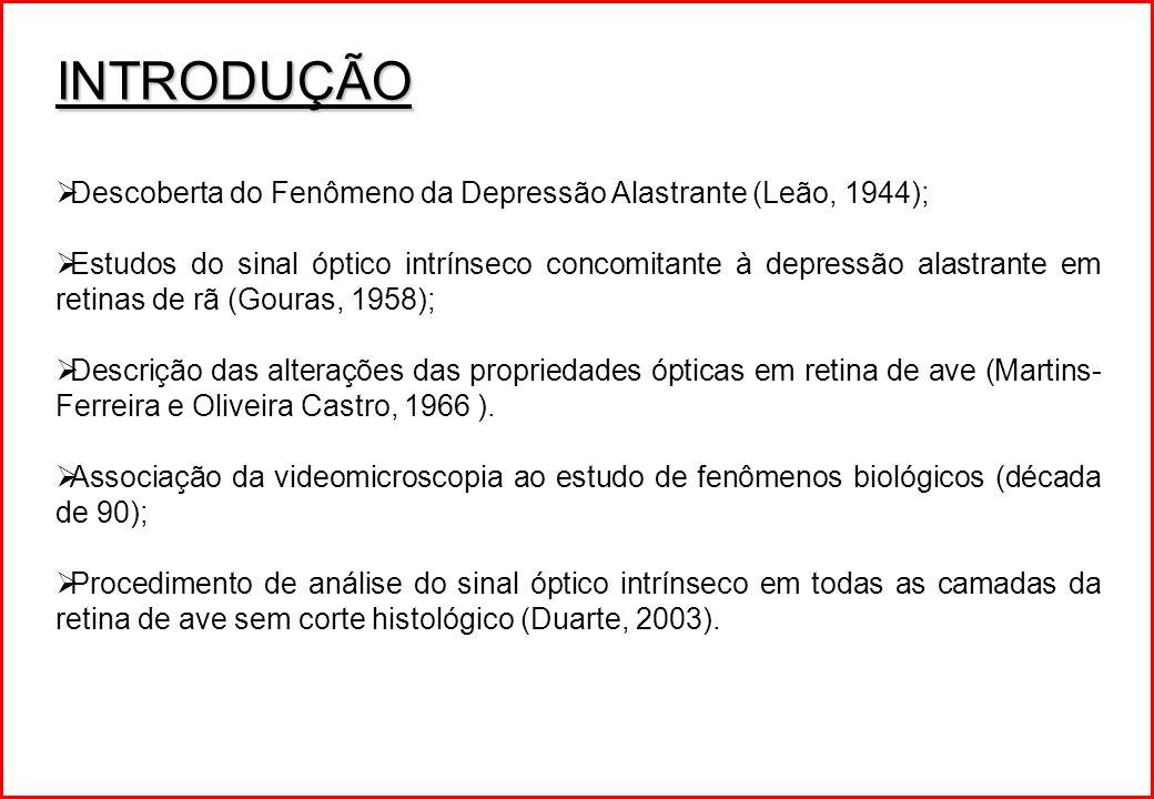 INTRODUÇÃO Descoberta do Fenômeno da Depressão Alastrante (Leão, 1944); Estudos do sinal óptico intrínseco concomitante à depressão alastrante em reti