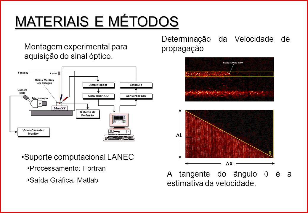 MATERIAIS E MÉTODOS Suporte computacional LANEC Processamento: Fortran Saída Gráfica: Matlab Montagem experimental para aquisição do sinal óptico. Det