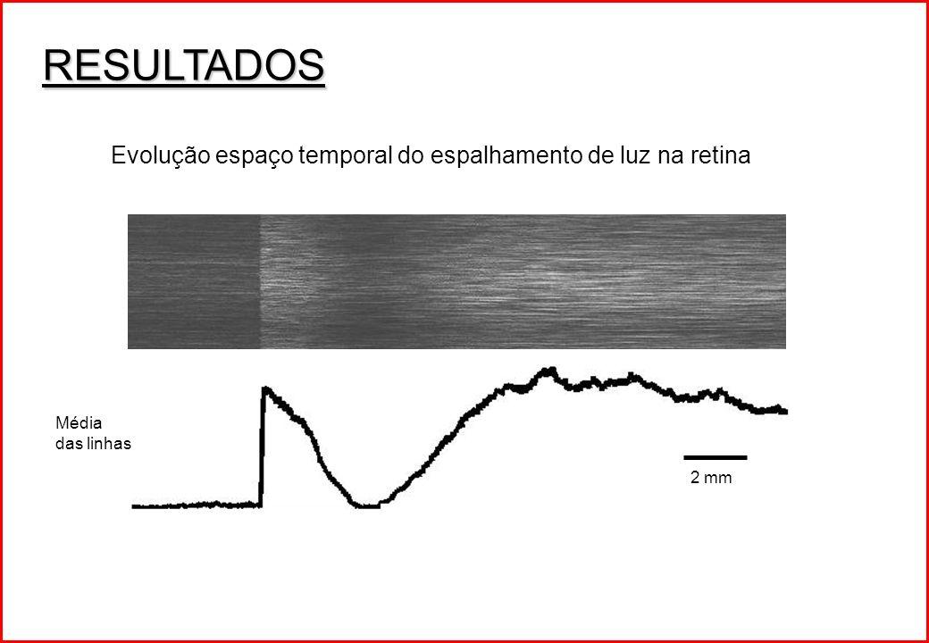 RESULTADOS Evolução espaço temporal do espalhamento de luz na retina Média das linhas 2 mm