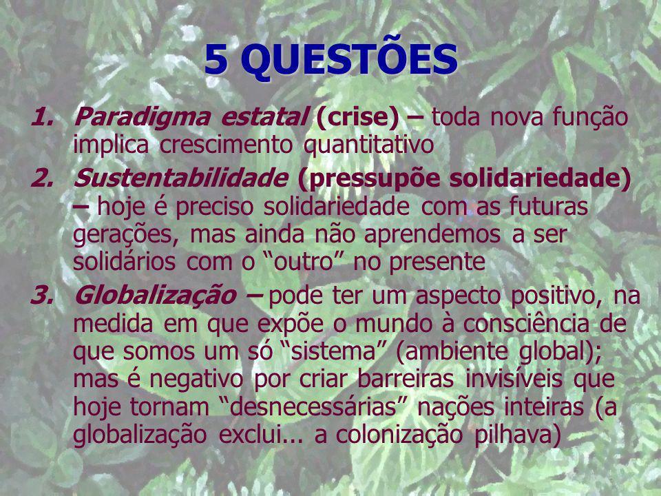 5 QUESTÕES 1.Paradigma estatal (crise) – toda nova função implica crescimento quantitativo 2.Sustentabilidade (pressupõe solidariedade) – hoje é preci