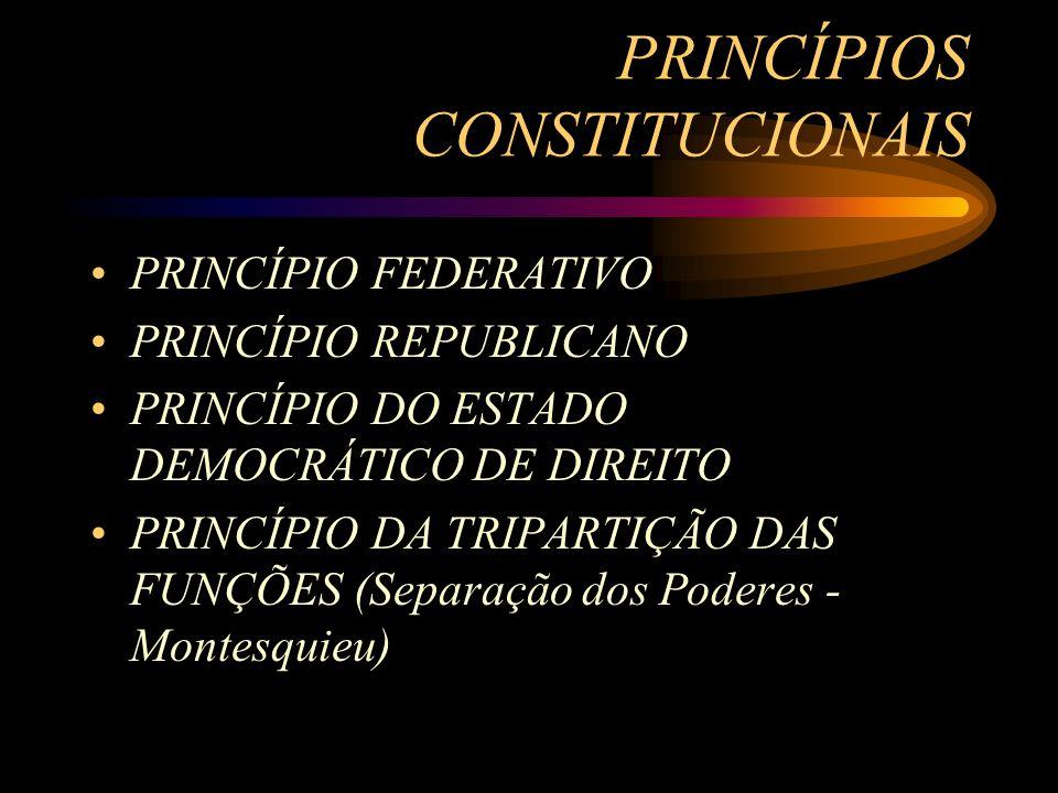 PRINCÍPIOS CONSTITUCIONAIS PRINCÍPIO FEDERATIVO PRINCÍPIO REPUBLICANO PRINCÍPIO DO ESTADO DEMOCRÁTICO DE DIREITO PRINCÍPIO DA TRIPARTIÇÃO DAS FUNÇÕES