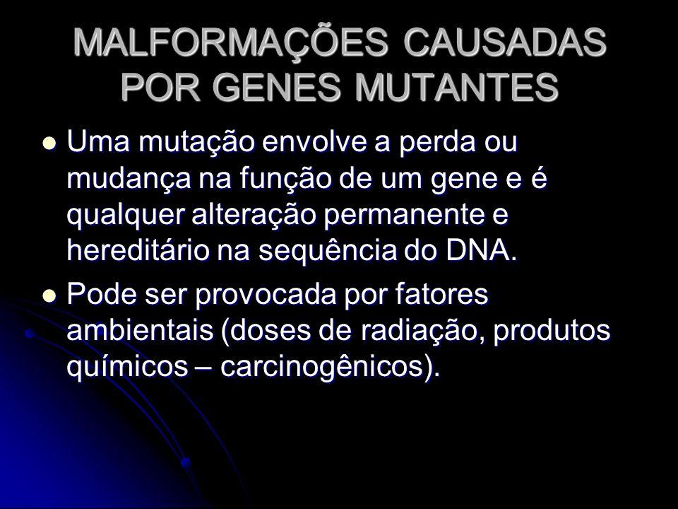 MALFORMAÇÕES CAUSADAS POR GENES MUTANTES Uma mutação envolve a perda ou mudança na função de um gene e é qualquer alteração permanente e hereditário n