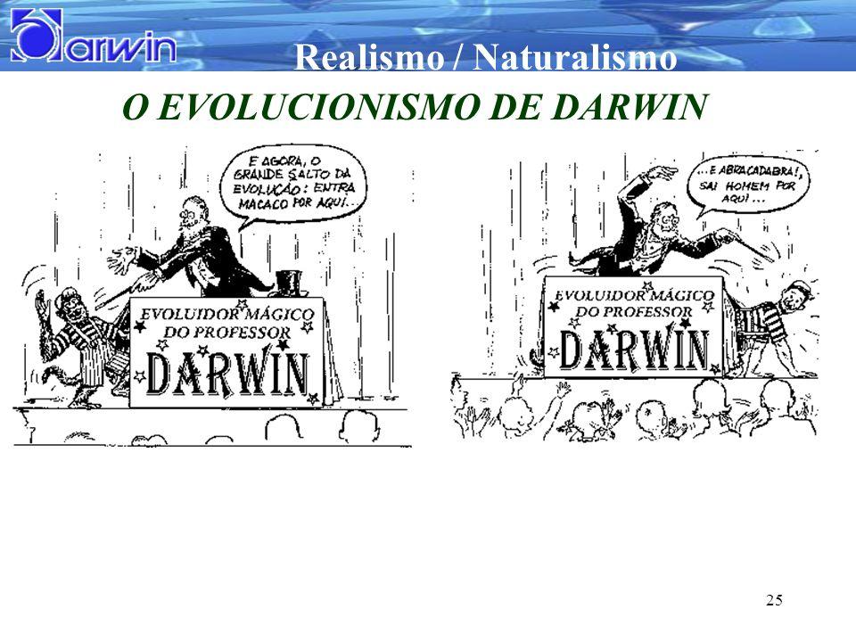 Realismo / Naturalismo 25 O EVOLUCIONISMO DE DARWIN