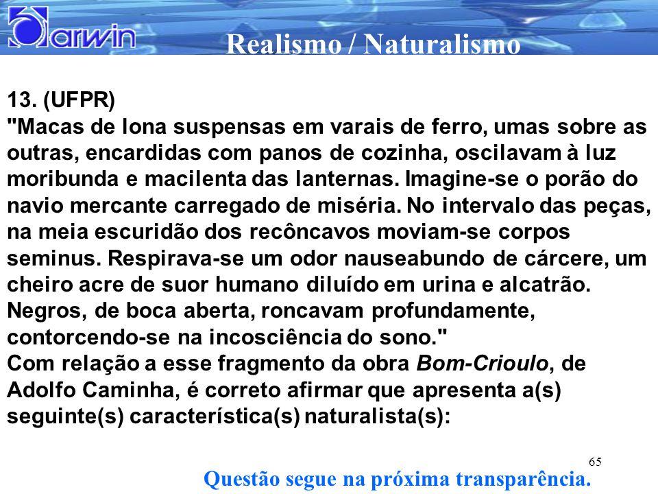 Realismo / Naturalismo 65 13. (UFPR)