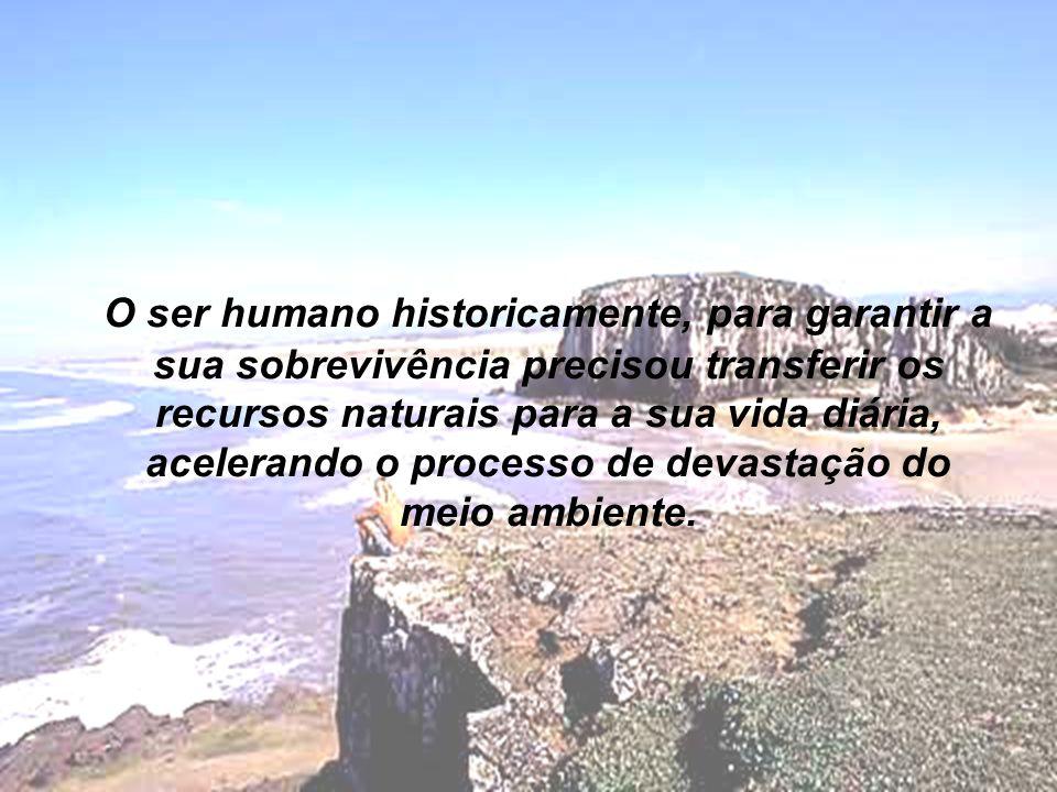 O ser humano historicamente, para garantir a sua sobrevivência precisou transferir os recursos naturais para a sua vida diária, acelerando o processo de devastação do meio ambiente.