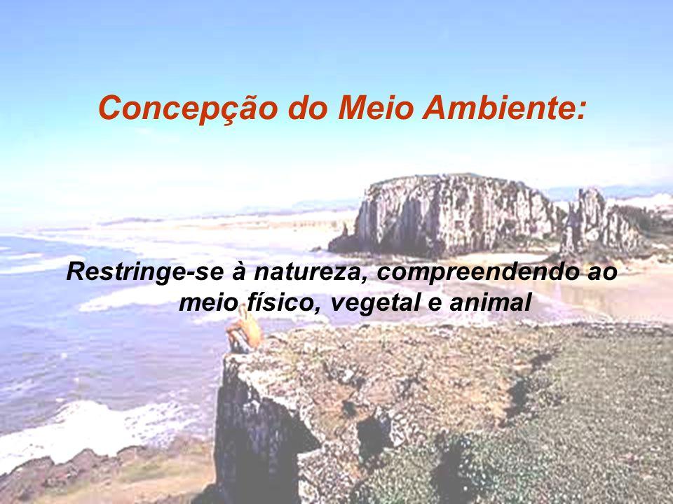 Restringe-se à natureza, compreendendo ao meio físico, vegetal e animal Concepção do Meio Ambiente: