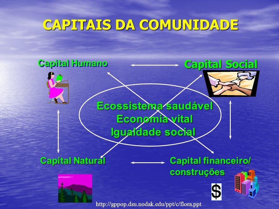CAPITAIS DA COMUNIDADE Capital Social Capital financeiro/ construções Capital Humano Capital Natural Ecossistema saudável Economia vital Igualdade social http://gppop.dsu.nodak.edu/ppt/c/flora.ppt